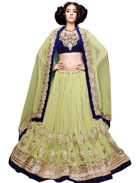 Green Net Velvet border Lehenga Choli Dupatta Fabric Only SC5004