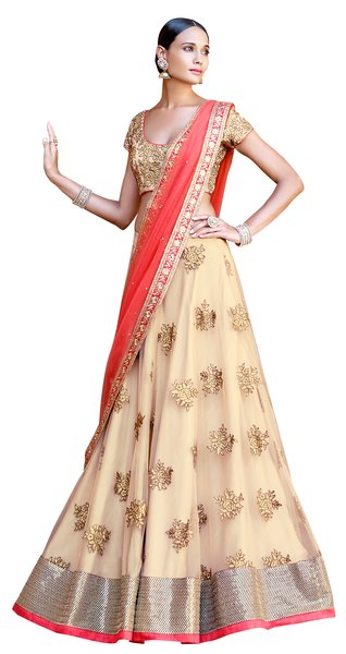 Beige Net Heavy Choli Dupatta Fabric Only SC5047