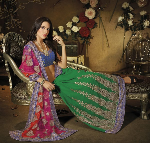 Designer Green and Pink Schiffli Embroidered Net and Georgette saree SC9004A