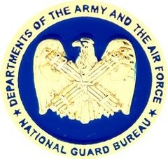 National Guard Bureau Pin #90-14516