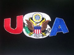 USA With Eagle Patch #GE3156