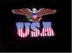 USA Eagle Patch #GE3149