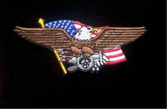 Eagle with Cannon Patch #GE3151