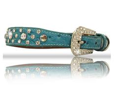 Blue Rhinestone Dog Collar