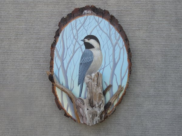 Chickadee (small)
