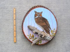 Owl---- (small)