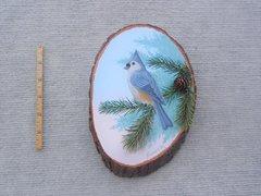 Titmouse ( small )