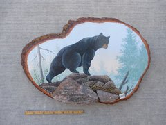 Bear(medium) SOLD