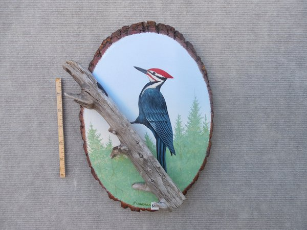 Woodpecker (medium)