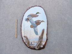 Ducks (large)