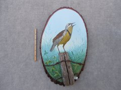 Meadowlark  (medium)