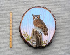 Owl----(small)