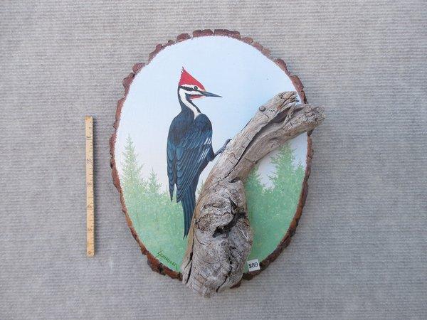 Woodpecker (medium)