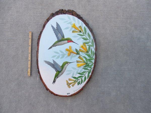 Hummingbirds  (medium)