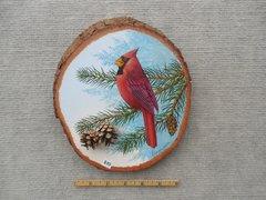 Cardinal     (small)