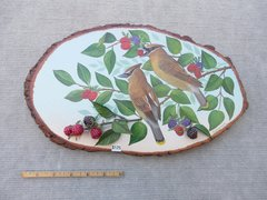 Cedar Waxwings (large)