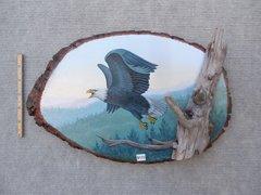 Eagle (medium)