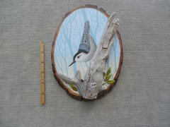 Nuthatch  ( Small )