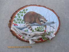 Raccoon  (large)
