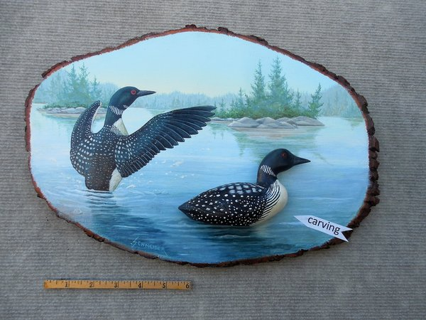 Loons   (large)