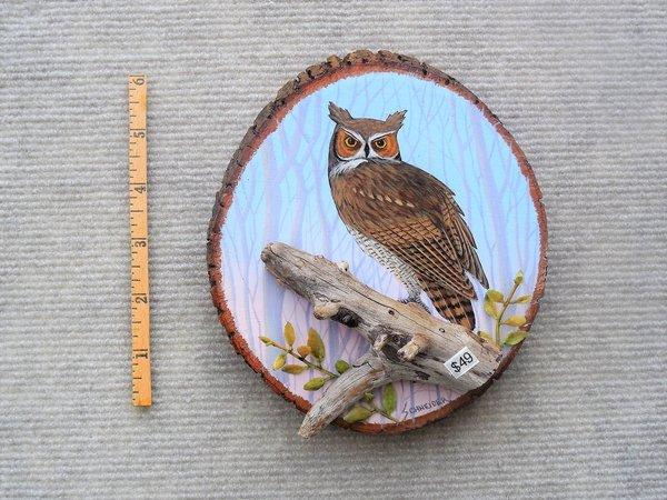 Owl---- (small)