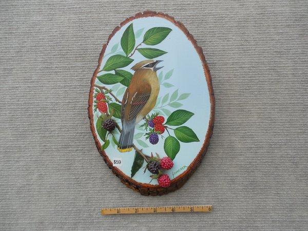 Cedar Waxwing   (small)