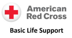 Red Cross Basic Life Support (BLS) Blended Learning