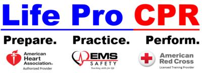 Life Pro Safety