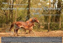Birthday Gift Sponsorship