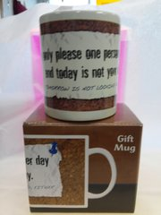 I Can Only Please One Person Mug