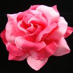 5 inch Red and Pink Two Tone Flower