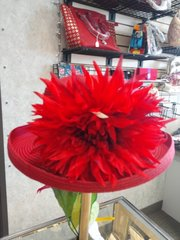 Floppy Red Hat 3