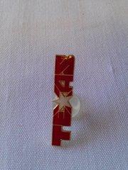 Texas Lapel Pin #1513