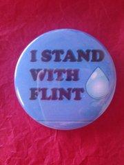 Flint Water Button #2618