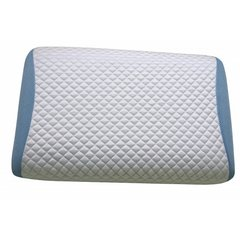 PRIMO POLAR TROPIC PILLOW