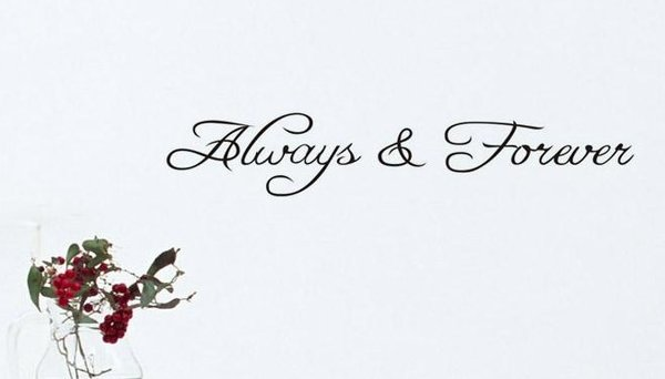 Always Forever Unique Modern Loving Wall Quote Wall Decal Wall Art Home Decorating Family Kids Men Woman Childrens Rooms Kitchen Livingroom Bedroom Bathroom Removable Washable Reuseable Vynal also 427771664584090859 besides 457748749600152359 additionally Cat besides Fraekke Wallstickers. on disney fathead stickers