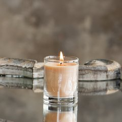 Citrus Mint 2.5oz Soy Candle in Glass