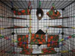 17 pc Bedding - Sugar Glider Cage Set - Rat - Orange Camo