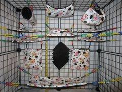15 pc Bedding - Sugar Glider Cage Set - Rat - Summer Sheep