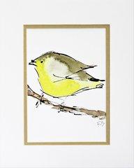 Watercolor Bird #75