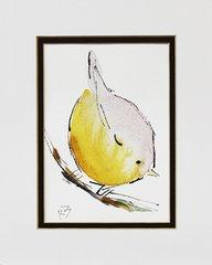 Watercolor Bird #375