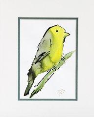Watercolor Bird #116