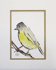 Watercolor Bird #330