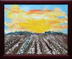 Sunny Cotton Field