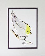 Watercolor Bird #472