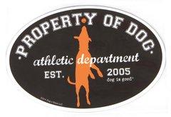 Property of Dog - Oval Magnet