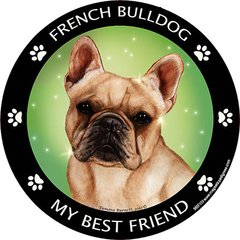 French Bulldog - My Best Friend - Round Color Magnet