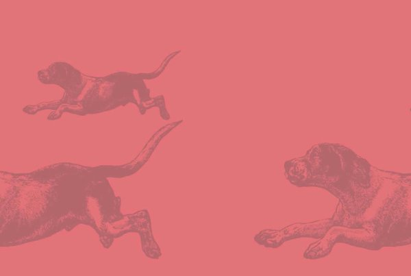Running Dog (Ladies) - CORAL