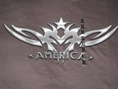 America Chrome on Gray Unisex tee (XL only)