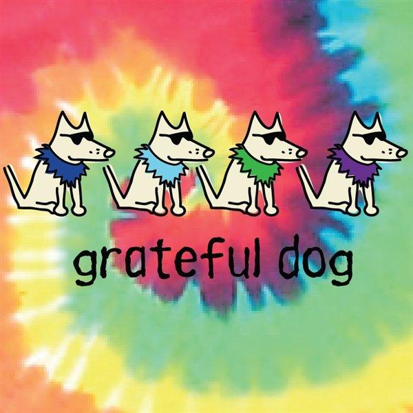 Grateful Dog (Ladies V-neck)